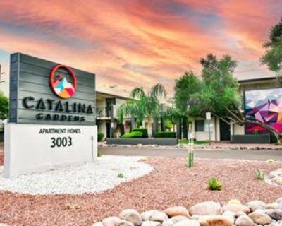 3003 N Alvernon Way #234, Tucson, AZ 85712 1 Bedroom Condo