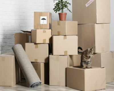 FREE PROFESSIONAL MOVING BOXES
