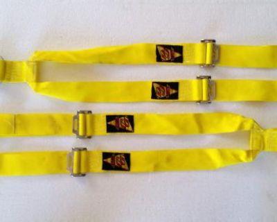 Y-Type Wrap Around Harness