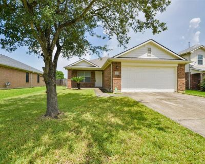 13027 Lark Point Court, Houston, TX 77044