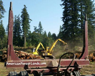 🌲LOGGING COMPANY Trees Land Enumclaw, Maple Valley, Hobart, Auburn, Black Diamond Yelm