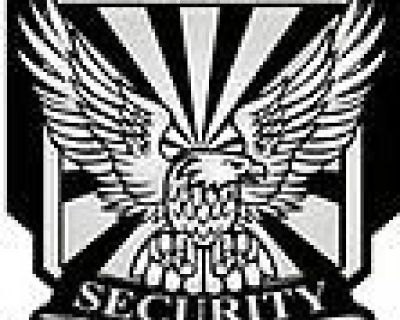 Assertive Security Services Consulting Group, Inc