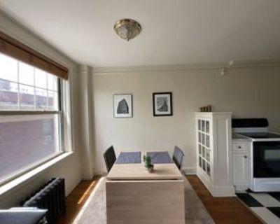 66 Summer Street #4D, Buffalo, NY 14209 Studio Apartment