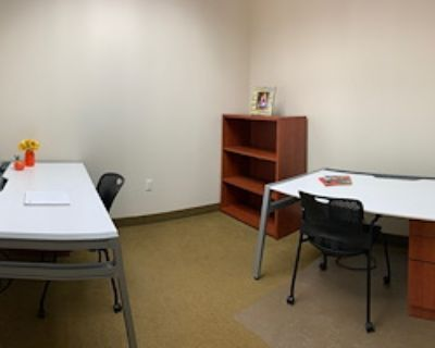 Private Office for 3 at Metro Offices - Reston