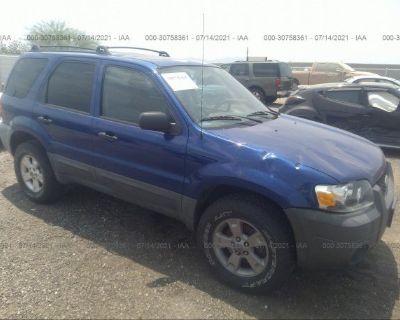 Salvage Blue 2005 Ford Escape