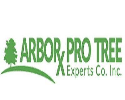 Arbor Pro Tree Experts Co. Inc.