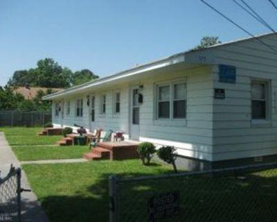 173 W Seaview Ave #4, Norfolk, VA 23503 1 Bedroom Apartment