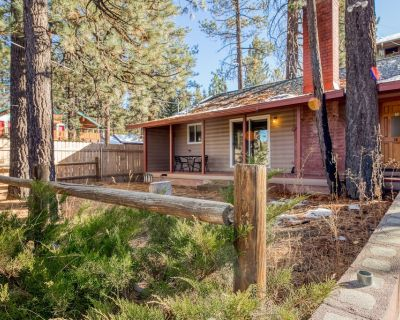 Updated mountain retreat with porch & forest views - Dogs welcome! - Big Bear Lake