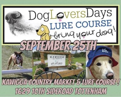 Kawigga Country Market & Dog Lure Course
