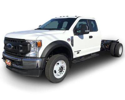 2021 FORD F550 Pickup Trucks Truck