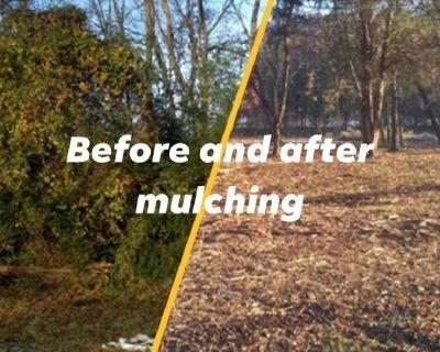 We offer Lot Mulching - Lot Clearing - Bushog