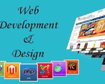 MCM Infotech Company Providing Top Web Designing Services in delhi.