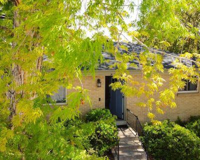 Suburban Retreat w/Gym, Office, Yard & Fire Pits - Lamar Heights Area