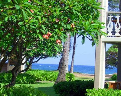 Gorgeous tropical paradise - Wailua