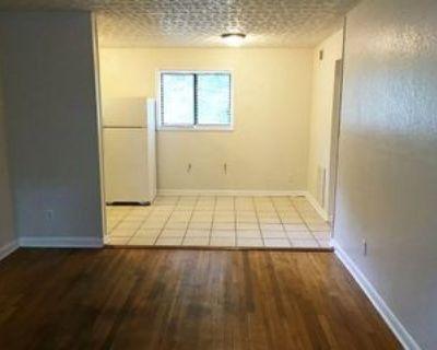237 Kirkwood Road - 3 #3, Atlanta, GA 30317 1 Bedroom Apartment