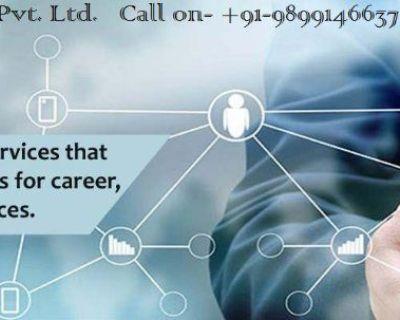 PR Visa and Immigration Consultant in Delhi