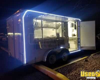 Never Used 2020 7' x 14' Lark Food Concession Trailer / Brand New Mobile Kitchen