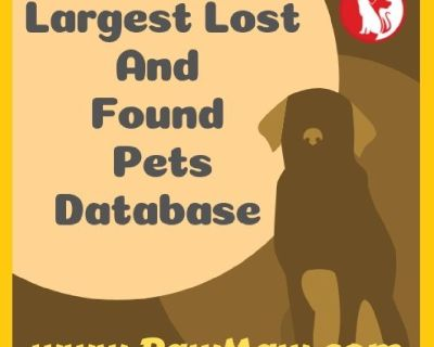 CREATE FREE LOST PET FLYER WITH PET RESCUE COMMUNITY!