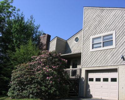 The Oasis in the Trees in private, beautiful, and close to shopping & downtown. - Asheville