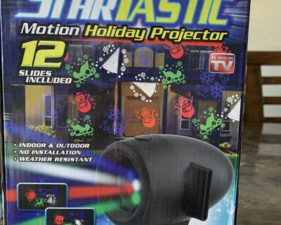 Motion holiday projector