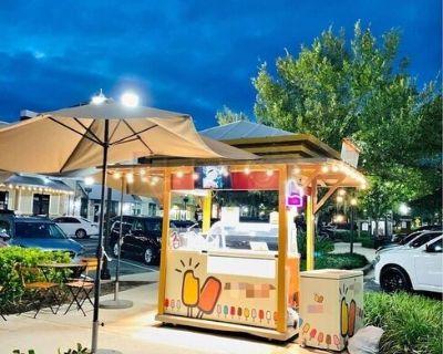 CUTE Complete Turnkey Mobile Gelato Popsicle/Ice Cream Vending Cart