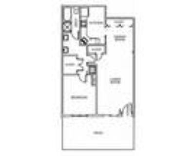 Lenox Village Apartments - 1 Bedroom 1 Bath