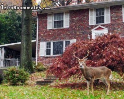 $1900 1 apartment in Crestwood