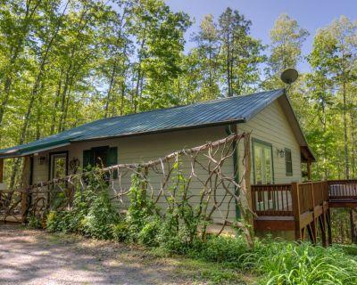 Heavenly Hideaway Cabin, King bed, Hot Tub - Fletcher