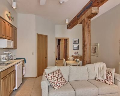 Foster Boat Works 1BR Condo- remodel completed winter 2019 - Charlevoix