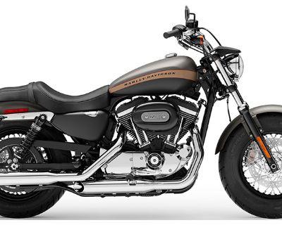 2019 Harley-Davidson 1200 Custom Sportster Norfolk, VA