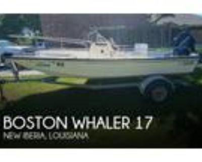 Boston Whaler - Montauk 17
