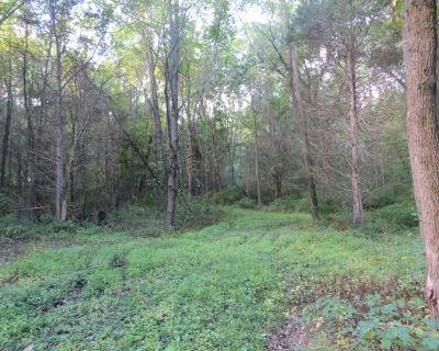 30 Wooded Acres for Sale - Dexter Schools