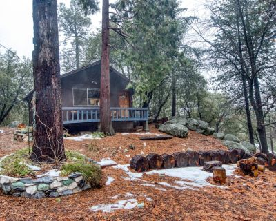 Newly renovated cabin on 2.5 acres with deck and forest views! - Pine Cove