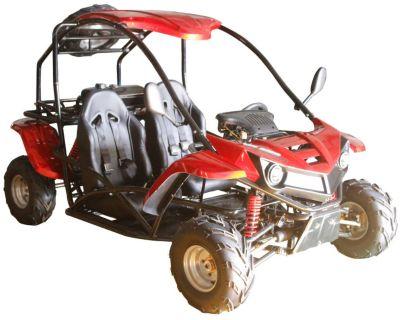 2021 Cougar Cycle T-Rex 125cc Go Karts Savannah, GA