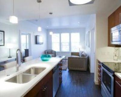 1742 N Pearl St #209, Denver, CO 80203 1 Bedroom Apartment