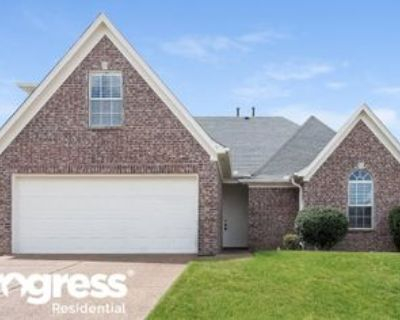 9049 Billy Pat Dr, Olive Branch, MS 38654 3 Bedroom House