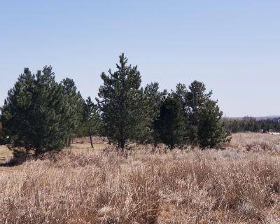 Tree spading large trees kansas