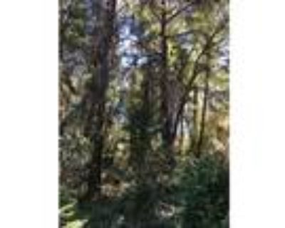 17 Acres in Apple Hill Country