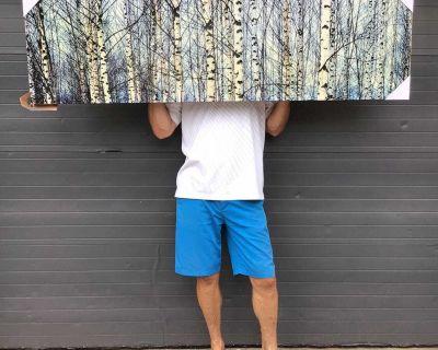 ART SALE - NEW large birch canvas print - high gloss