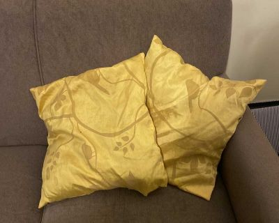 Two yellow couch cushions