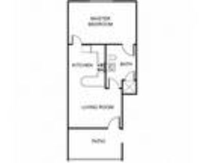 The Regency Apartment Homes - Furnished Large One Bedroom (Starting at $1450)