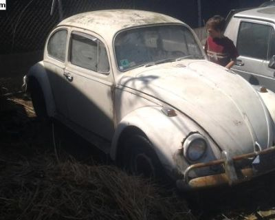 1967 Bug barn find parting out