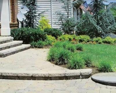 Front yard landscaping Gardening Weymouth | Noble Garden Design