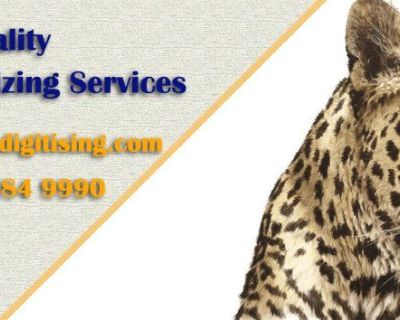 Custom Embroidery Digitizing Services USA - Digital Embroidery