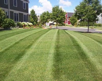 >>>>>Affordable Lawn Service<<<<<