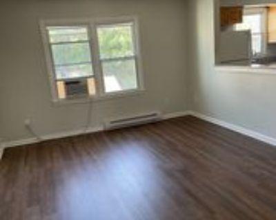 171 W Balview Ave #5, Norfolk, VA 23503 1 Bedroom Apartment