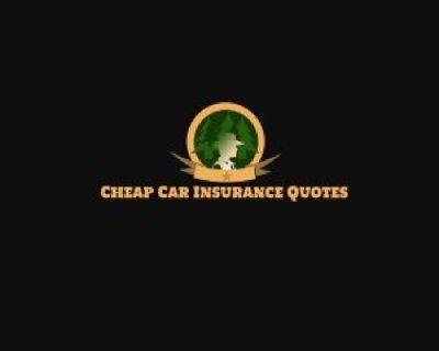 Low-Cost Car Insurance Virginia Beach