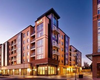 Fairfax Blvd #5, Fairfax, VA 22031 1 Bedroom Apartment