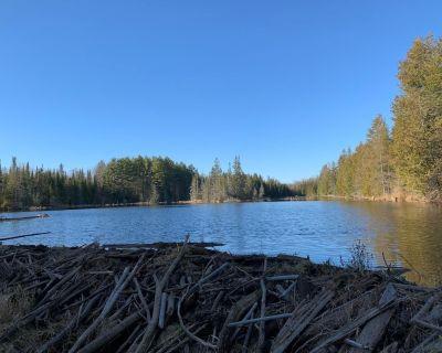 Dream Cottage Vacation Summer/Winter, Lake Chandos - North Kawartha
