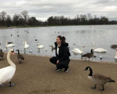Maggie, 37 years, Female - Looking in: Arlington Arlington County VA